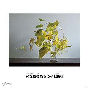 味岡伸太郎  『11月(鬼野老)』キャンバス