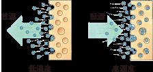 稚内メソポア珪藻土 自律的な調湿作用